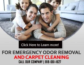 Carpet Cleaning La Canada Flintridge, CA | 818-661-1627 | Call Now !!!