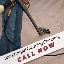 Contact Carpet Cleaning Company for Services